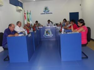 plenario17